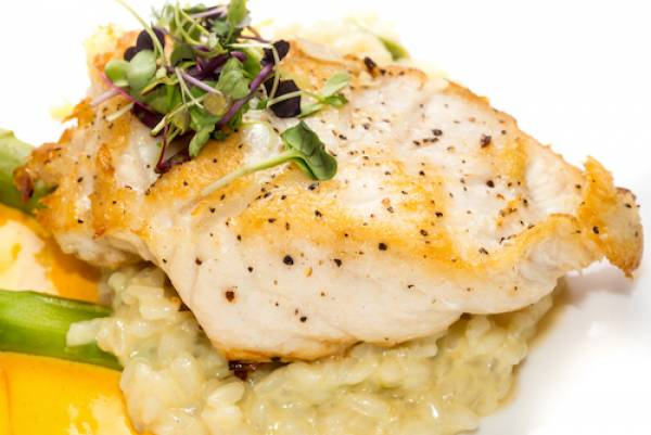 grouper dish