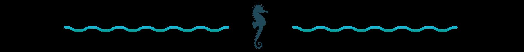 Decorative seahorse divider
