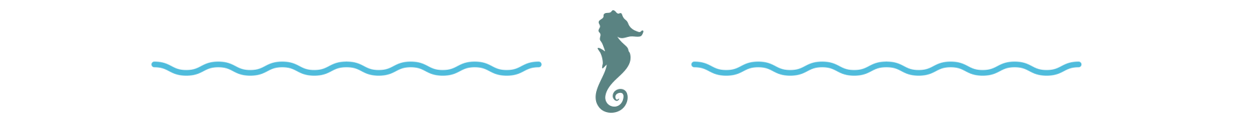 starkey branded divider with seahorse