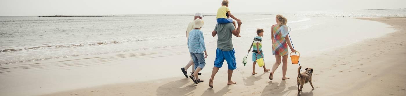 family on beach with a dog